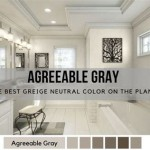 Accent Wall Color To Go With Agreeable Gray