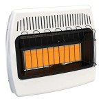 Propane Heater Indoor Wall Mounted Vented